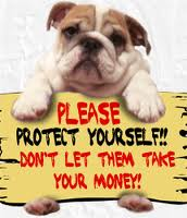 antiscam-bulldog-holding-sign
